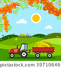 hill, agriculture, vector 39710646