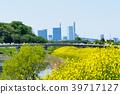 Shibakawa and Saitama Shintoshin in spring 39717127
