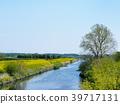 Shibakawa in spring 39717131
