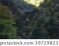 가을, 협곡, 단풍 39729823