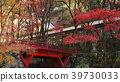 가을, 단풍, 쇼소인 39730033