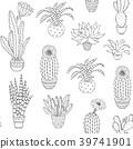 hand drawn houseplant 39741901
