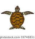 海龜 綠海龜 烏龜 39746831