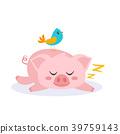 sleeping pink pig 39759143