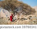 Beautiful girl in red dress bellow desert tree 39760341