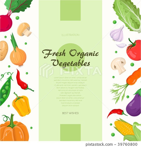 Fresh organic vegetables - modern colorful vector 39760800