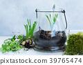 garden inside mason jar 39765474
