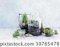 garden inside mason jar 39765478