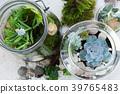 garden inside mason jar 39765483