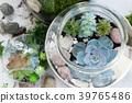 garden inside mason jar 39765486