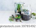 garden inside mason jar 39765492