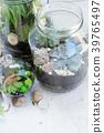 garden inside mason jar 39765497
