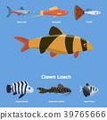向量 向量圖 魚 39765666
