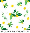 lemon, pattern, vector 39769153