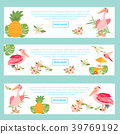 Set of banners with Hawaiian elements and pelicans 39769192