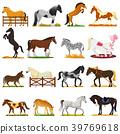 Cartoon horse vector cute animal of horse-breeding 39769618