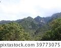 야쿠시마 산악 풍경 39773075