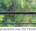 비오는 날 39774506