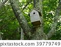 กล่องรังนก (สวนนกป่า Saiko / Fujikawaguchiko-cho West Lake 2068, Minamitsuru-gun, จังหวัด Yamanashi) 39779749