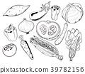 套菜傳染媒介例證 39782156