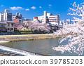 kamo river yoshino 39785203