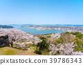 ดอกซากุระบาน,ซากุระบาน,ฤดูใบไม้ผลิ 39786343