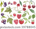 Set of hand drawn berries isolated on white 39788045