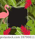 熱帶 火烈鳥 向量 39790611