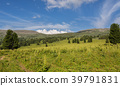 Beautiful summer landscape on top of Altai Krai 39791831