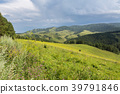 Beautiful summer landscape in Altai Mountains 39791846
