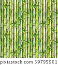 Green bamboo forest seamless pattern 39795901