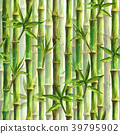 Green bamboo forest seamless pattern 39795902