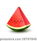 Vector realistic fresh fruit watermelon 39797846