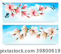 Two Nature banners with blossom branch of magnoli 39800619