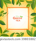 ชา,สีเขียว,เขียว 39803882