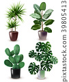 Realistic Houseplant Icon Set 39805413