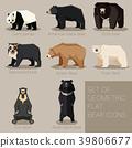 bear, vector, animal 39806677