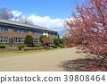 봄, 폐교, 초등학교 39808464