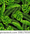 palm coconut monstera 39817658