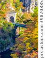 【미야기 현】 鳴子峡의 단풍 39820885