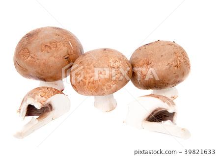 Set Champignon mushroom isolated on white  39821633