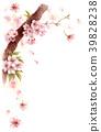 櫻花 櫻 賞櫻 39828238