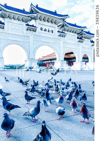 中正紀念堂與鴿子 Chiang Kai-shek Memorial Hall 中正記念堂とハト 39839636
