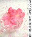 春天 春 花朵 39839952