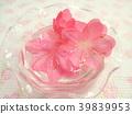 春天 春 花朵 39839953