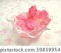 春天 春 花朵 39839954