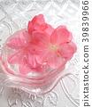 春天 春 花朵 39839966