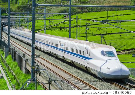 新鮮的綠茶田和新幹線 39840069