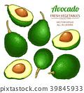 avocado vector set 39845933