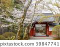 花茎 日本 旅游业 39847741